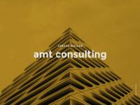 amt-consulting.de Webseite Vorschau