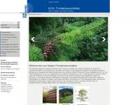 master-forst.uni-freiburg.de
