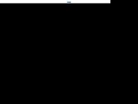 t4-consulting.de Webseite Vorschau