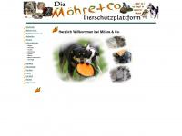 moehre-und-co.de