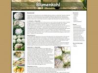 blumenkohl.org