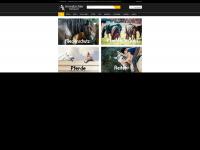 amesbichler.com