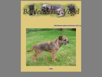 Borderterrier-vogel.de