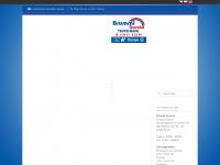 brummi-dusche.com Webseite Vorschau