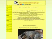 schnauzer-wiesensprung.de