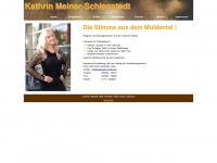 saengerin-online.de