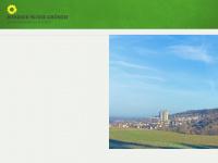gruene-umstadt.de