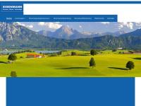 eisenmann-consulting.com