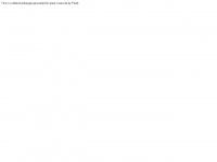 1aseo.de Webseite Vorschau
