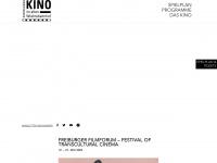 koki-freiburg.de Webseite Vorschau