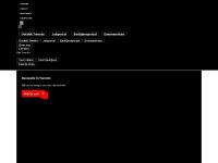 twente.com Webseite Vorschau