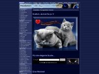 elegantekatzen.com