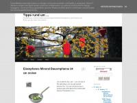eisenpfanne.blogspot.com