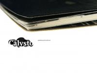 Calysto-gestaltung.de