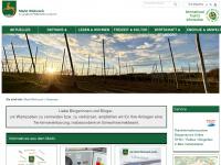 wolnzach.de