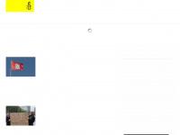 amnesty-hamburg.de Webseite Vorschau