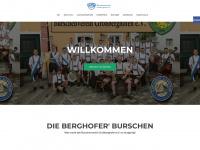 bv-grossberghofen.de Thumbnail