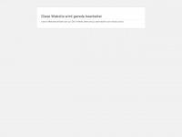 bxcon.de Webseite Vorschau