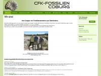 Cfk-fossilien.de