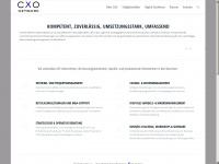 cxo-unternehmensberatung.de Webseite Vorschau