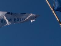 blaue-botschaft.de
