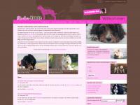 zuckerhunde.de Thumbnail
