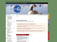 ammersee-guide.de