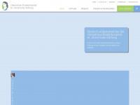 Ckh-stiftung.de