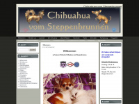 chihuahua-vom-steppenbrunnen.de