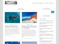 dominik-rothmeier.de Thumbnail