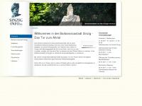 Sinzig-info.de