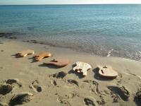 formentera-guitars.com