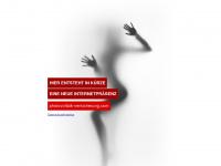 photovoltaik-versicherung.com Webseite Vorschau