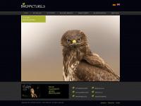 birdpictures.de