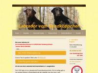 Labrador-vom-sandkoeppchen.de
