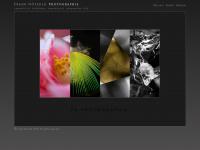 fnphotographie.de Webseite Vorschau