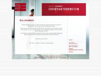 Feuerstein-steuern.de