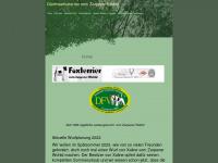 foxterrier-vom-zarpener-wohld.de