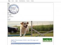 hundefreunde-undenheim.de