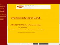 notmeerschweinchen-koeln.de
