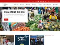 entwicklung.at Webseite Vorschau