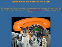 gassi-service.com