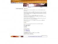 gp-uv.de Webseite Vorschau