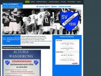svfischbach.com
