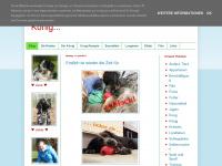rakete-und-koenig.blogspot.com