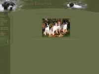 vom-emdebach.de