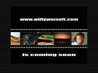 willywuzsoft.com