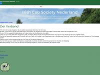 ics-nederland.com