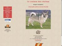 tresordesvikings.ch Webseite Vorschau
