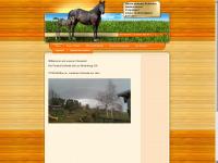 info-ponyhof.de